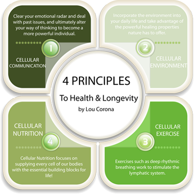 puradyme probiotics and pure enzymes