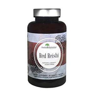 red reishi is just one of many natural food health supplements that work to heal disease.