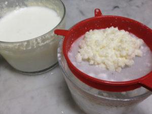 how to make raw kefir milk, probiotic kefir milk