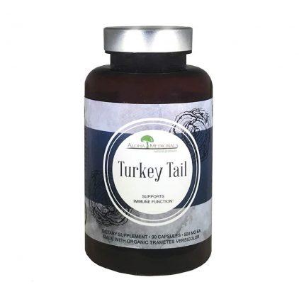 Turkey_Tail_1