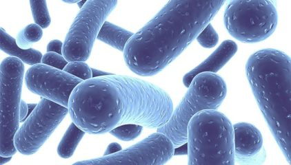 Can Probiotics Slow Down the Progress of HIV/AIDS?