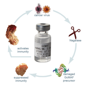 the nagalase autism cancer link can be mitigated with a nagalase test kit and GcMAF.