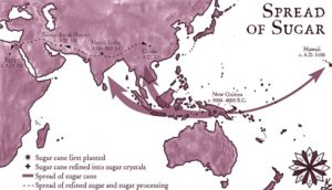 The history of sugar reveals its spread throughout the world.